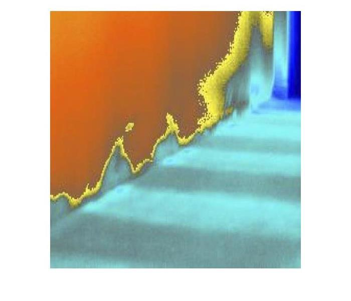 Water Damage Thermal Imaging Technology for Water Damage