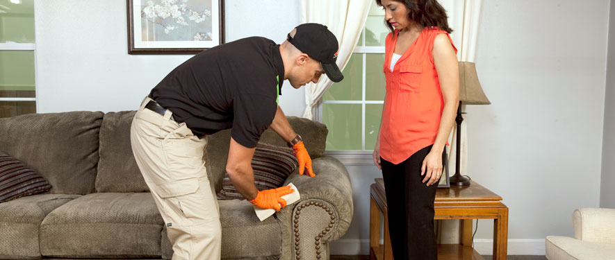 Greeley, CO carpet upholstery cleaning