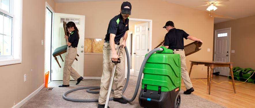 Greeley, CO cleaning services